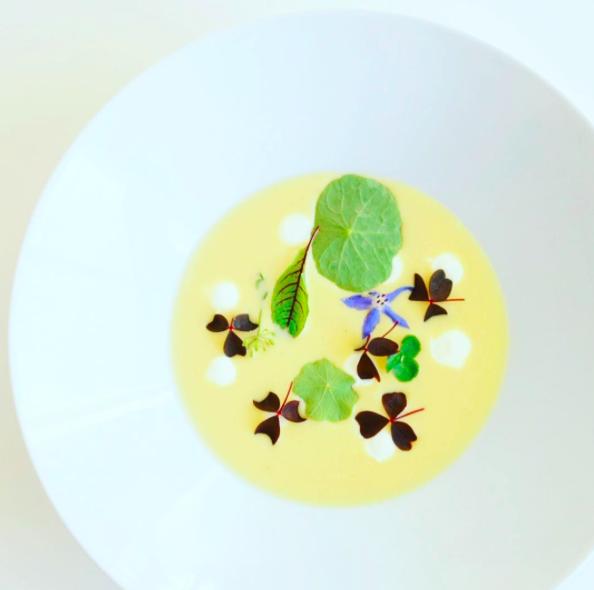 Lækker Cremet Græskar suppe